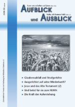 Aufblick und Ausblick 3/2020