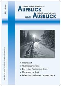 Aufblick und Ausblick 1/2017